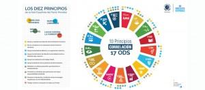 10 principios y correlación objetivos desarrollo sostenible